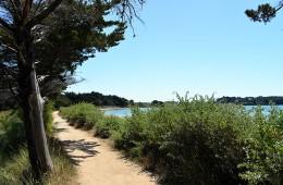 Sentier côtier bordant la plage de Locmiquel