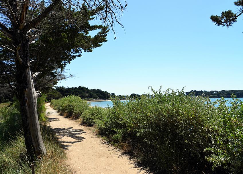 plage locmiquel camping ker eden golfe du morbiha
