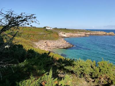 Ile d'houat Golfe du Morbihan près du Camping Ker eden