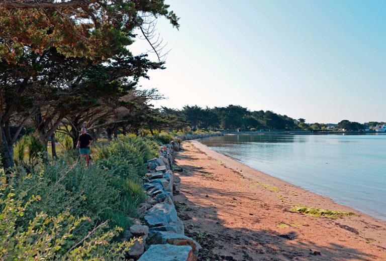 camping ker eden plage locmiquel golfe du morbihan